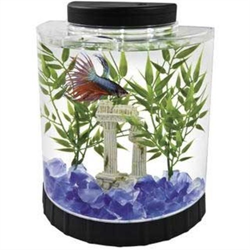 Tetra LED Half Moon Betta Aquarium