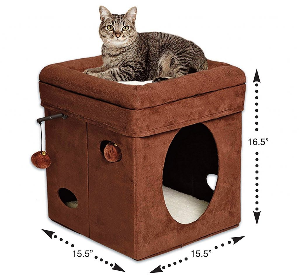 Curious Cat Cube House Condo